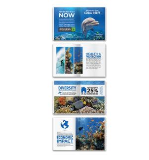 Reef Booklet